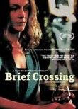 Brief Crossing Poster