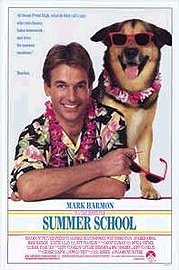 Summer School Poster