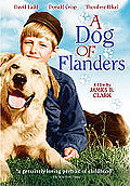 Dog of Flanders
