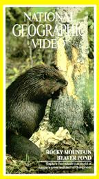 National Geographic Video - Rocky Mountain Beaver Pond