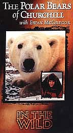 In the Wild - The Polar Bears of Churchill with Ewan McGregor