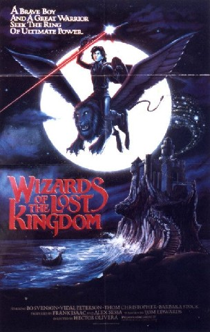 Wizards Of The Lost Kingdom