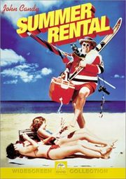 Summer Rental Poster