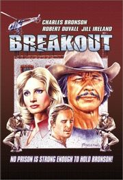 Breakout Poster