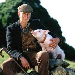 Babe - James Cromwell
