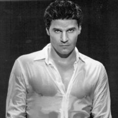 David Boreanaz