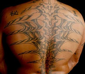 rey mysterio spine tattoos images galleries with a bite. Black Bedroom Furniture Sets. Home Design Ideas