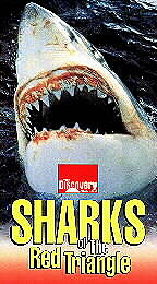 Sharks of the Red Triangle movie